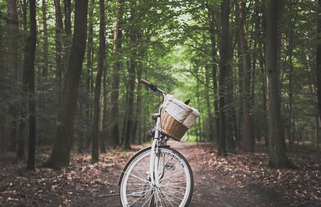 Mersul pe bicicleta toamna – 8 aspecte carora sa le dai atentie